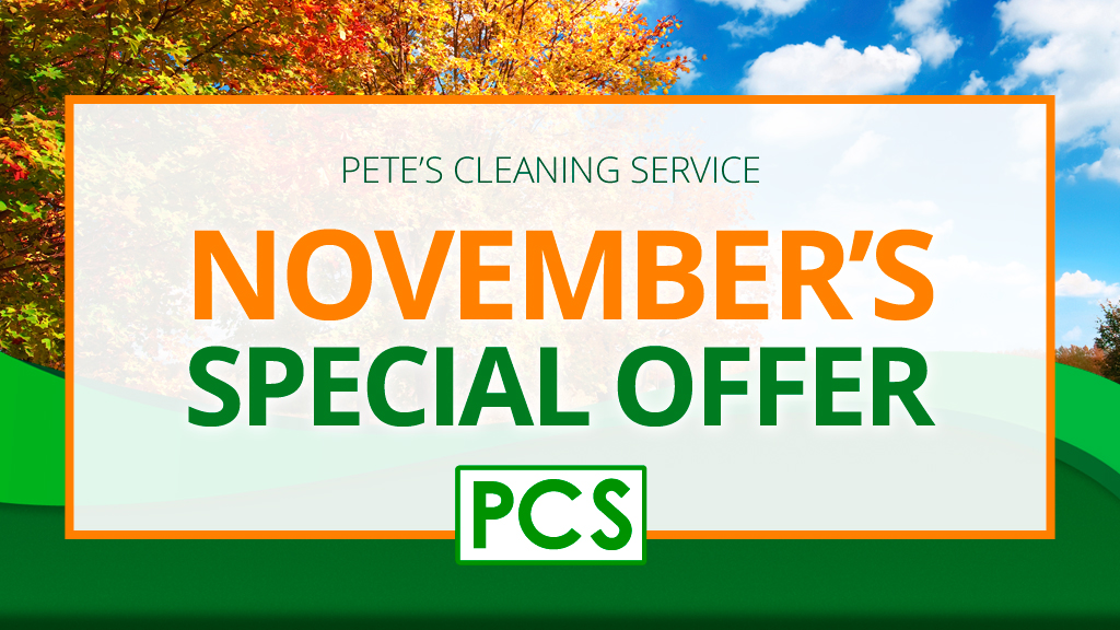 November Special – Couch & Loveseat Cleaning